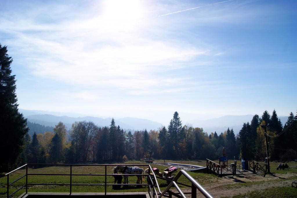 Szczyt Góry Parkowej - Krynica